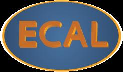 Ecal VGP